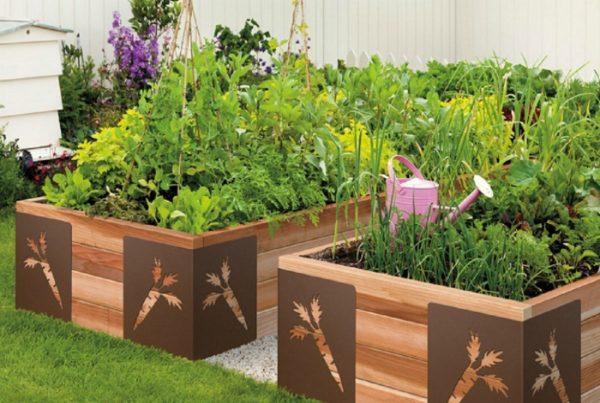 Полезные растения, которые надо посадить на своей грядке
