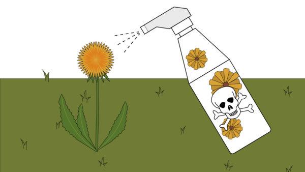 Работать с гербицидами надо соблюдая все правила безопасности