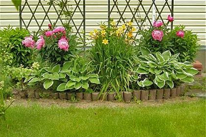Фото дачной клумбы – красивые растения создали удивительную гармонию