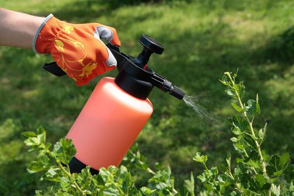 Инструкция по использованию органических инсектицидов требует обеспечения надежной защиты рук и лица