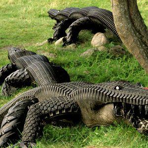 Крокодилы из покрышек