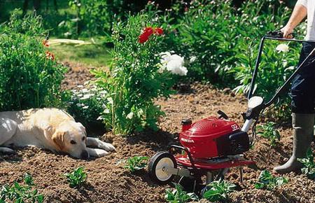 Культиватор помогает в окучивании растений и прополке грядок.