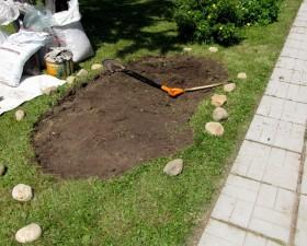 Лучше всего копать после дождя. В таком случае земля будет более податливой