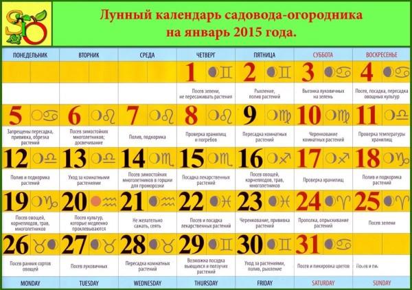 Можете использовать лунный календарь садовода на март