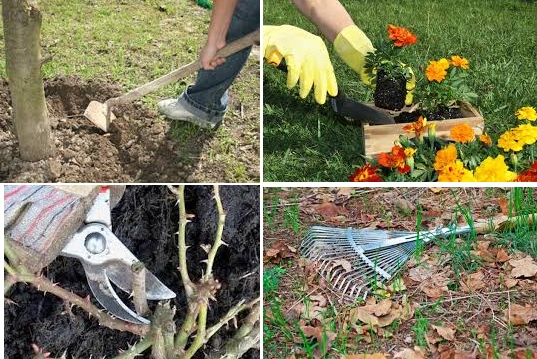 На фото - какие работы нужно проводить в апреле в саду