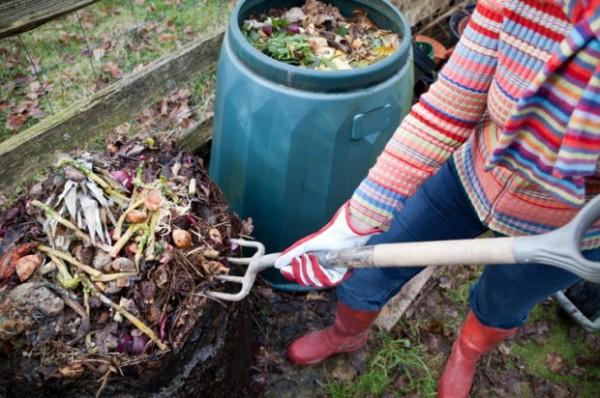 На фото - отходы для компоста