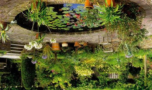 На фото: аккуратный водоем с кувшинками