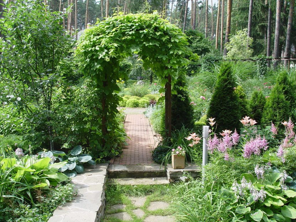 красиво оформленные садовые участки фото скоростей мощностей будут