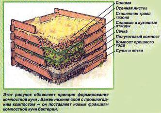 На фото конструкция компостного ящика.