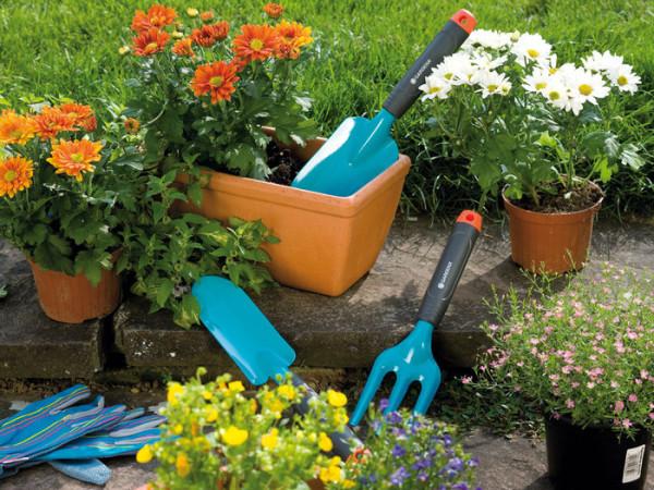Набор инструментов для ухода за декоративными растениями.