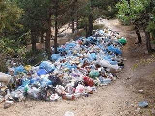 Не стоит превращать загородный ландшафт в помойку. Есть несколько цивилизованных способов избавиться от мусора на даче.