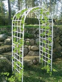 Окрашивание в светлые тона делает арки для сада из металла более нарядными и заметными