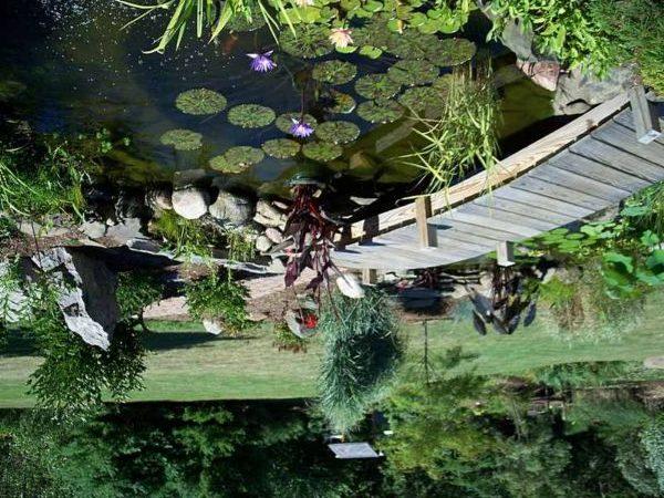 Озеро с мостиком