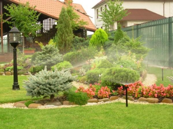 Полив растений – обязательная мера
