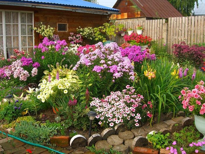 Разноцветный сад: лучшие сочетания