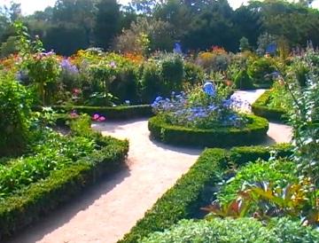 Пример садового участка с декоративными растениями и цветами разного уровня
