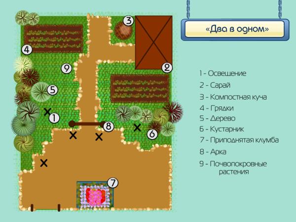 Пример схематического размещения растений разных типов в саду