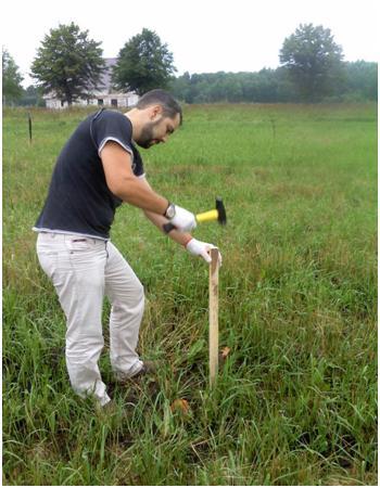 Процесс разметки территории под живую изгородь
