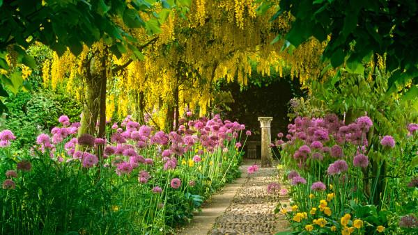 Сад при правильном оформлении способен стать местом отдыха