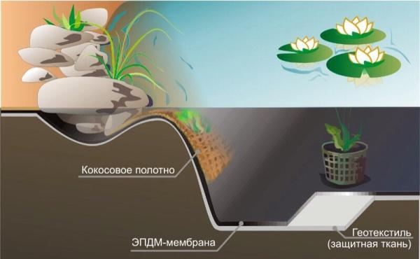 Строение стенки пленочного водоема