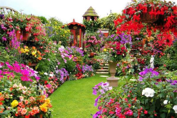 Цветники – украшение дачи