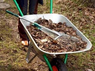 Уборка листьев на даче – подготовка материала для компоста