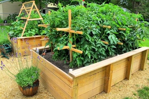Удобные и красивые конструкции для выращивания овощей