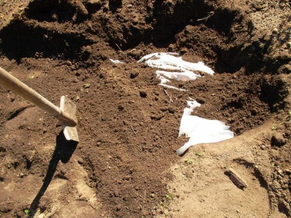 Устройство погреба