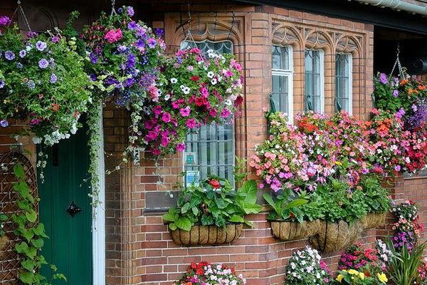 Цветы в вазонах на даче фото