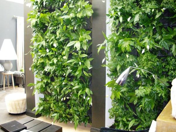 Вертикальный сад в квартире своими руками хорошо зарекомендовал в помещениях с недостаточной площадью