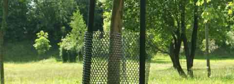 Защитная обвязка яблонь от грызунов с применением металлической сетки