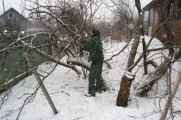 Зимняя обработка